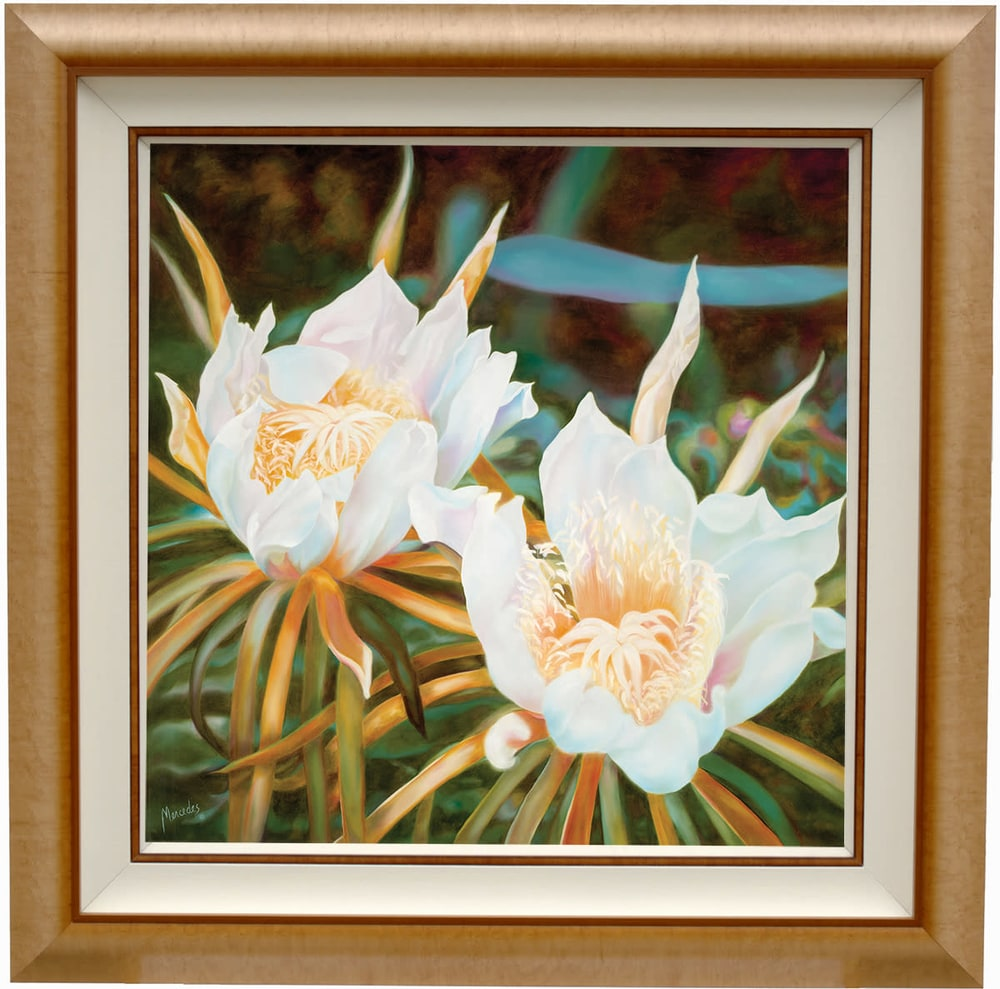 Nightblooming Cereus in frame200 res