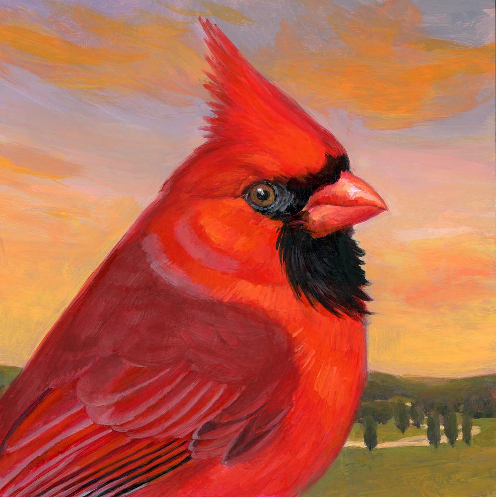 Cardinal Bird Block