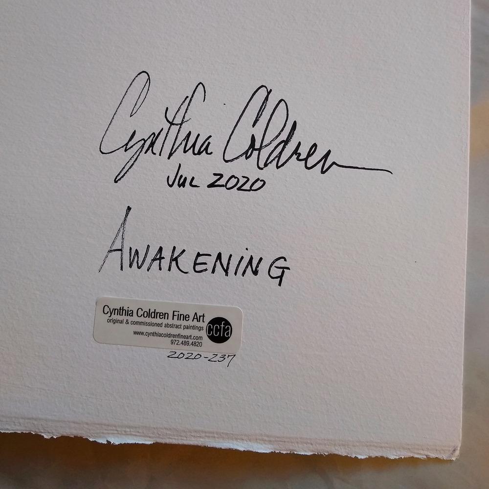 2020 237 Awakening Dtl4