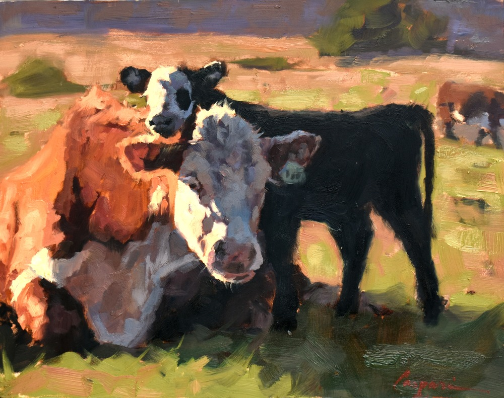 Cow and Calf, 11x14, Oil, 2020