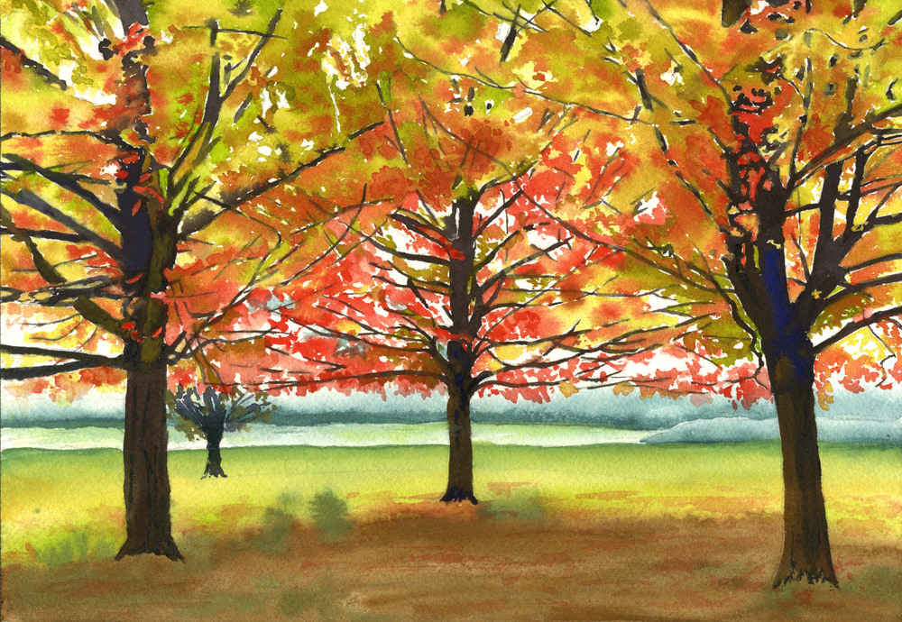 July 17 02 Maple Trees  ASF PRINT