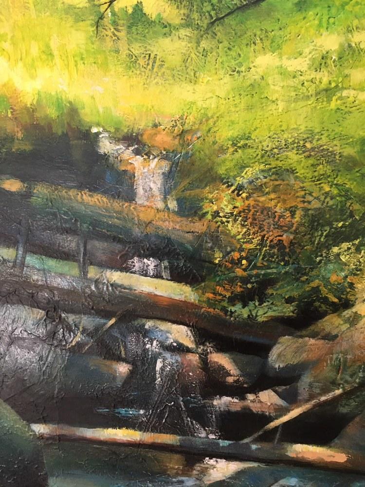 Hiawatha shaded stream  on the wall closeup