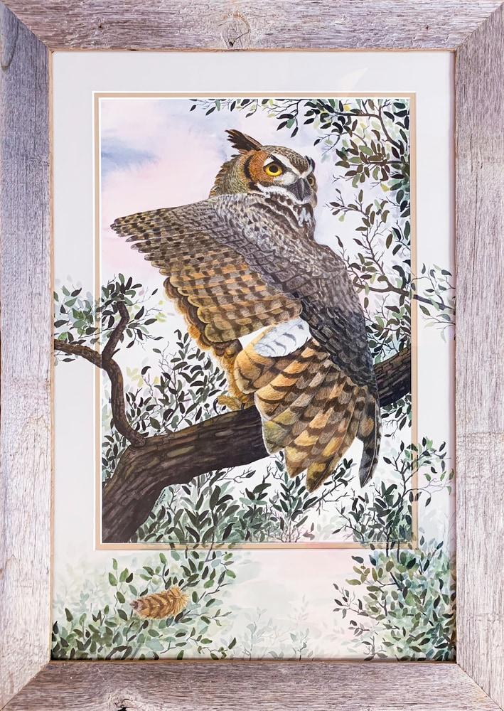 Great Horned Owl Framed