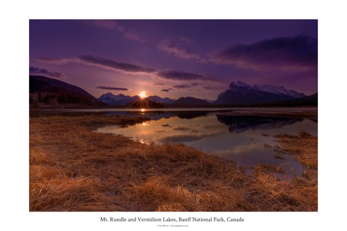 Rundle Poster 12 18