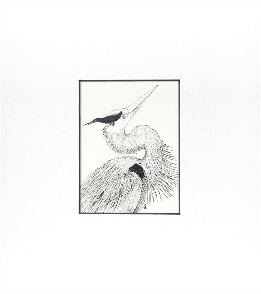 Great Blue Heron copy