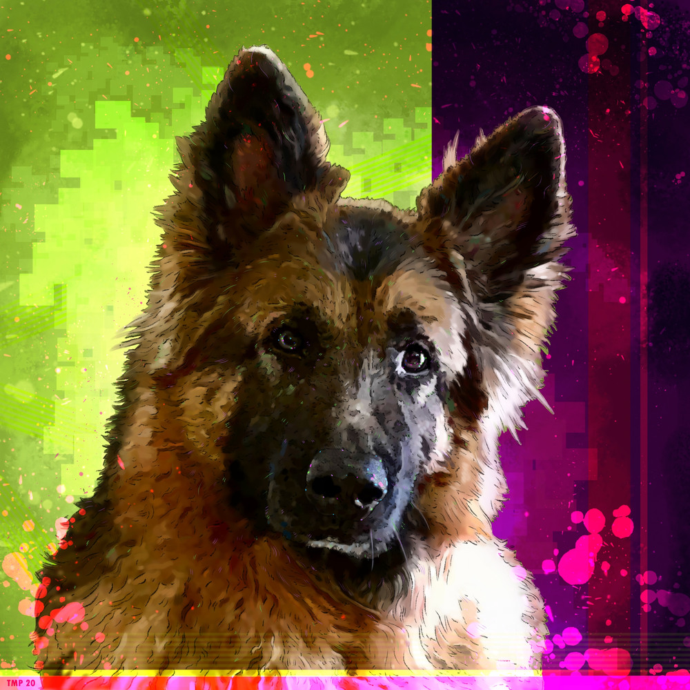 6 29 20 digital drawing commission laura pieczynski dog portrait diego jpeg version