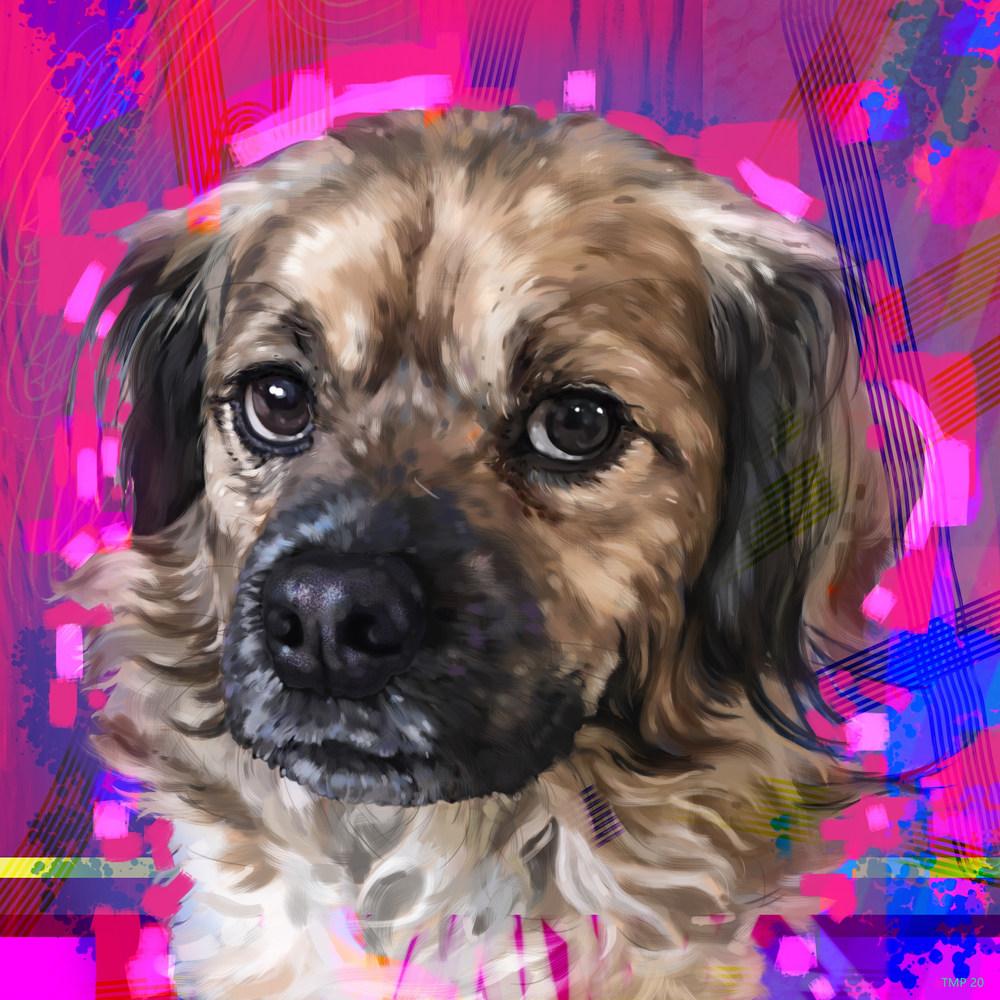 5 5 20 digital drawing commission morgan land dog portrait jpeg version