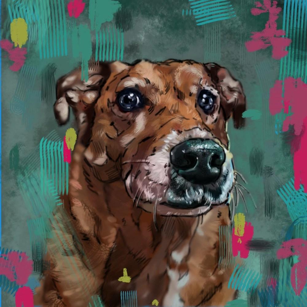 4 10 20 digital drawing commission christi wells russo dog portrait jpeg verision