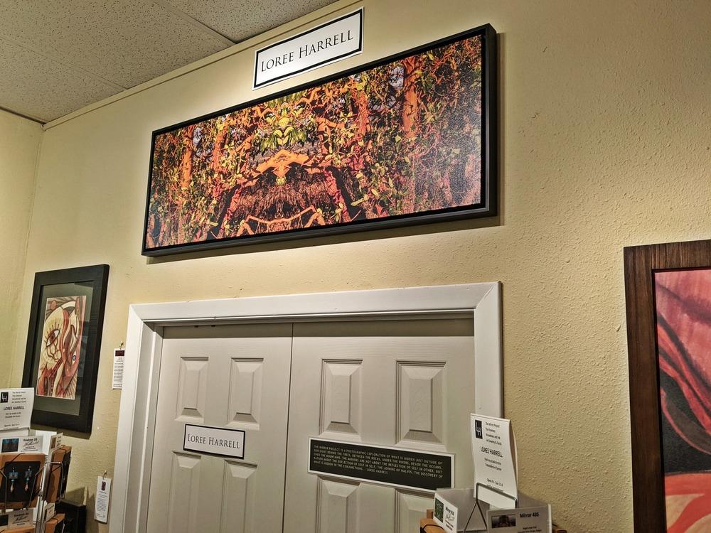 1604 48x16 frame canvas