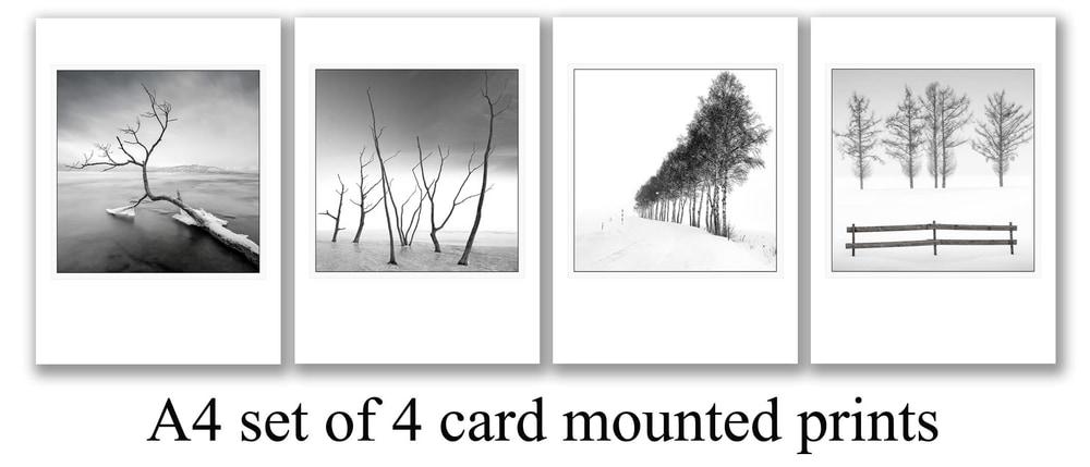 4card setA4