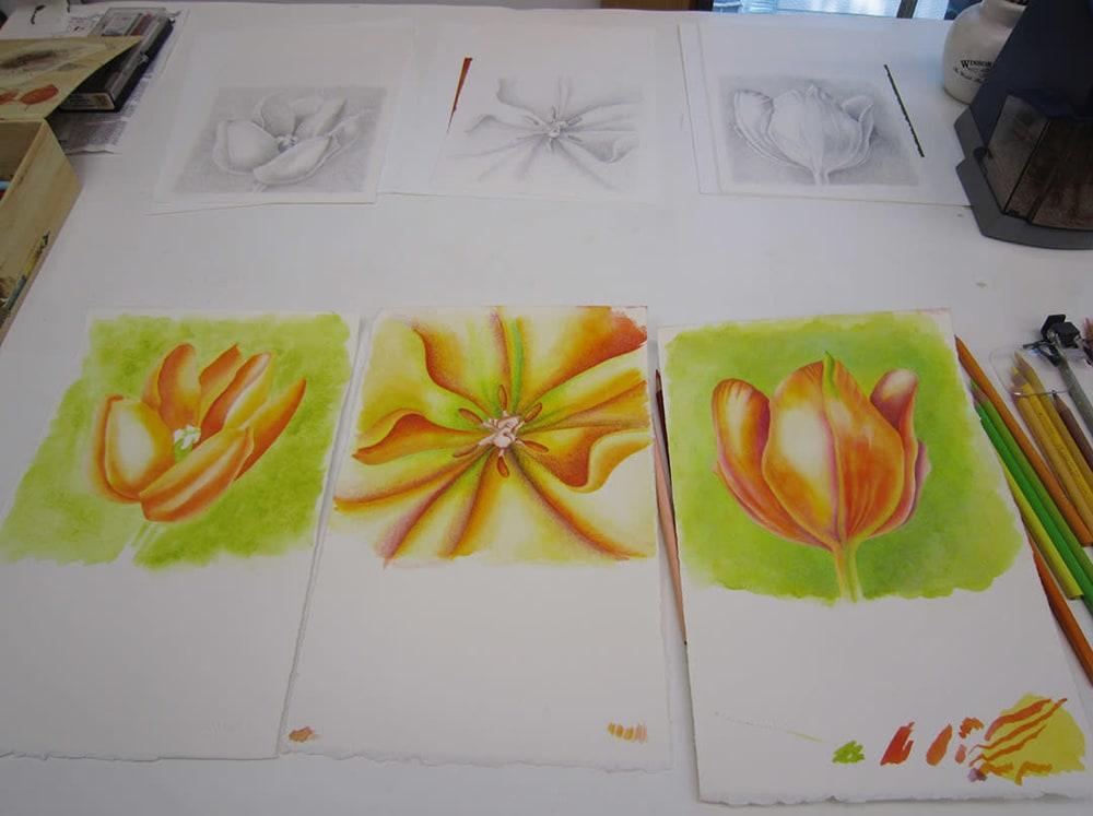 Orange tulips WIP IMG 0731 15x72