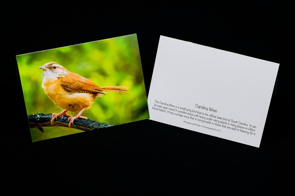 Note Cards 20200913 0009