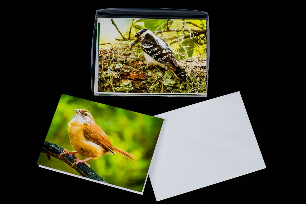 Note Cards 20200913 0005