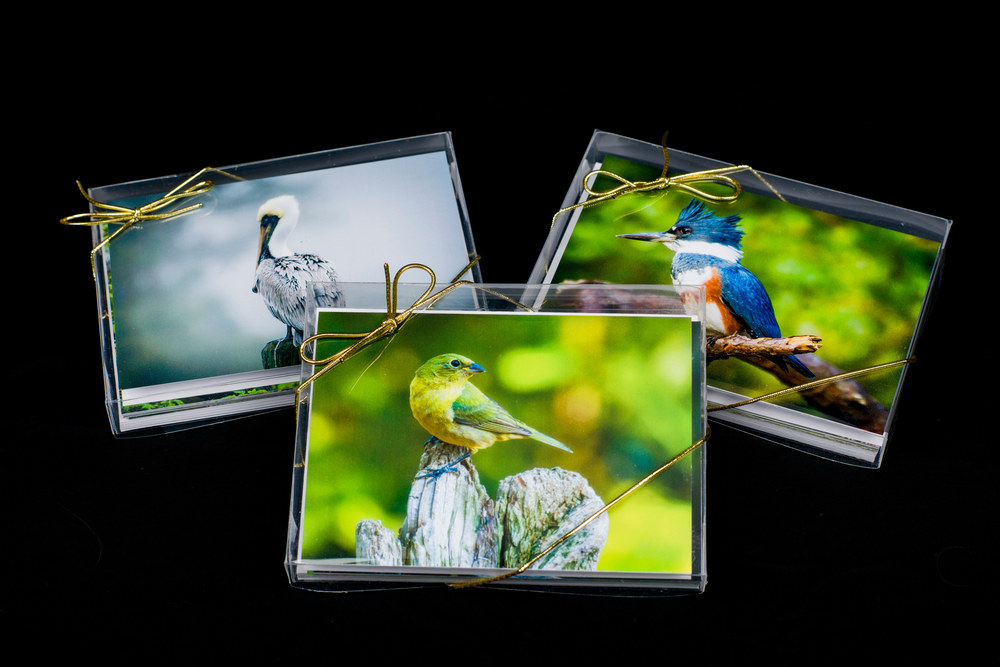 Note Cards 20200913 0013