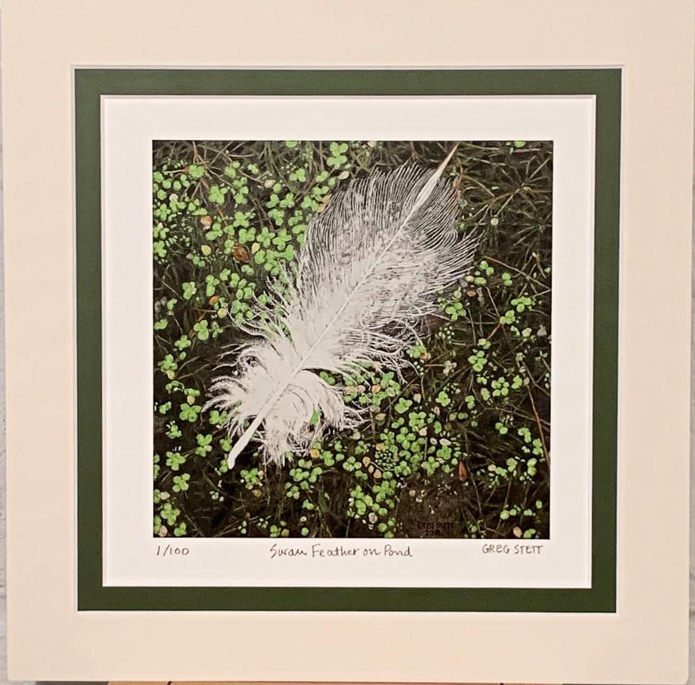 Feather Mat1