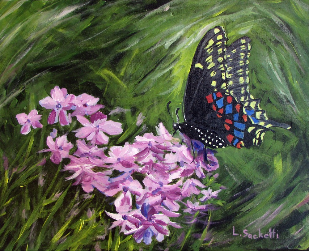 Butterfly 2a