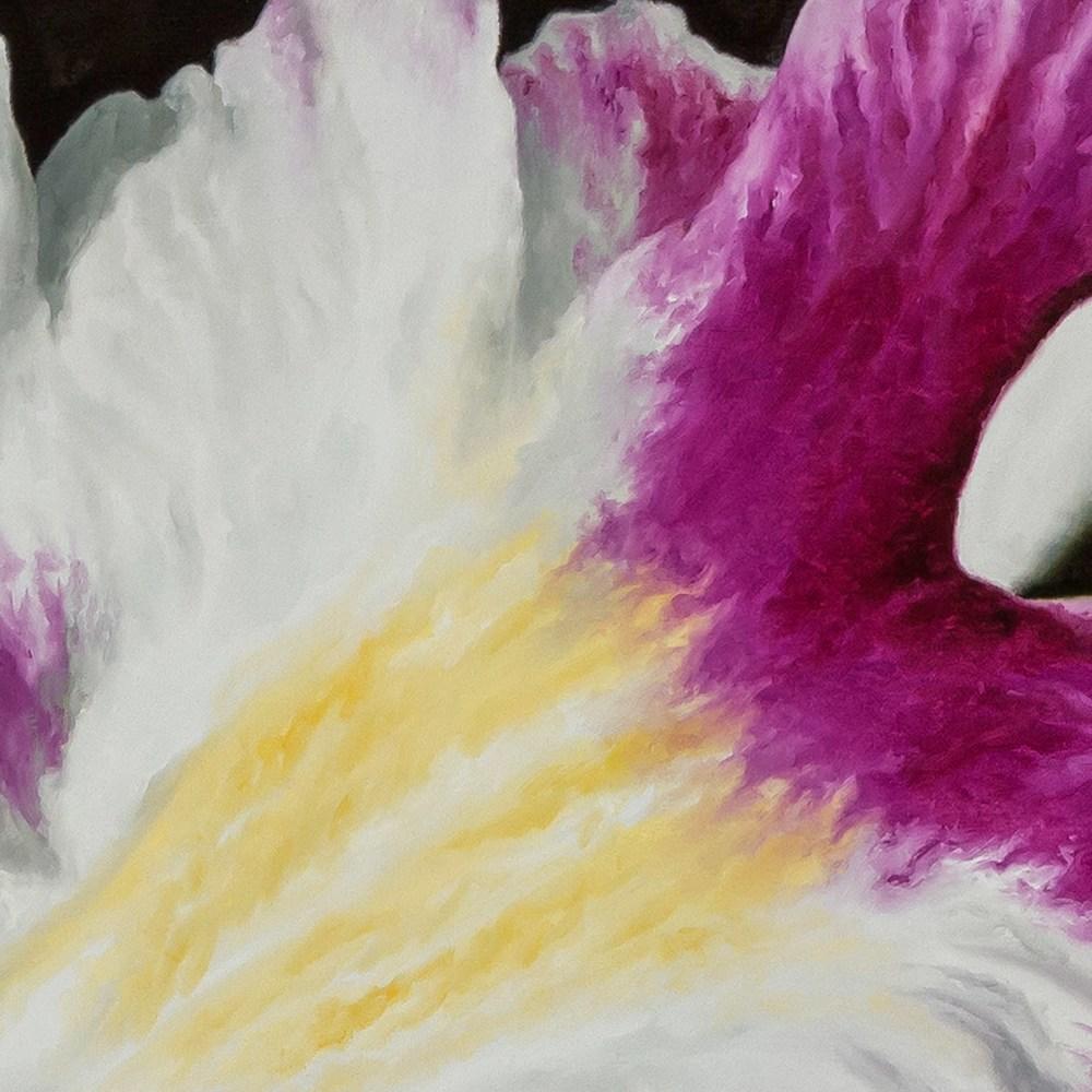 Orchid closeup2