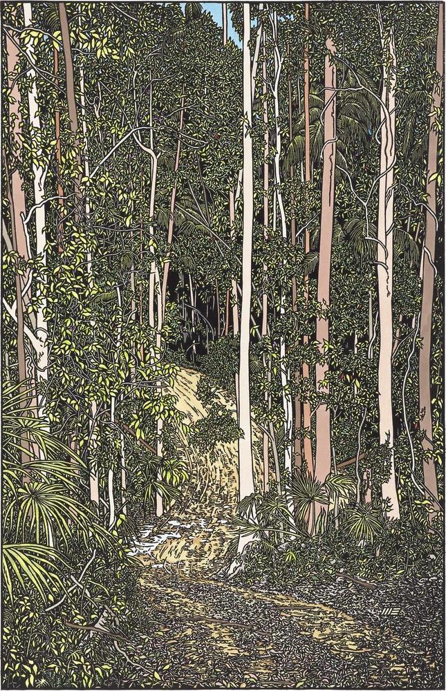 Wayne Singleton 023 Road through the Rainforest at Ilkley 2000px