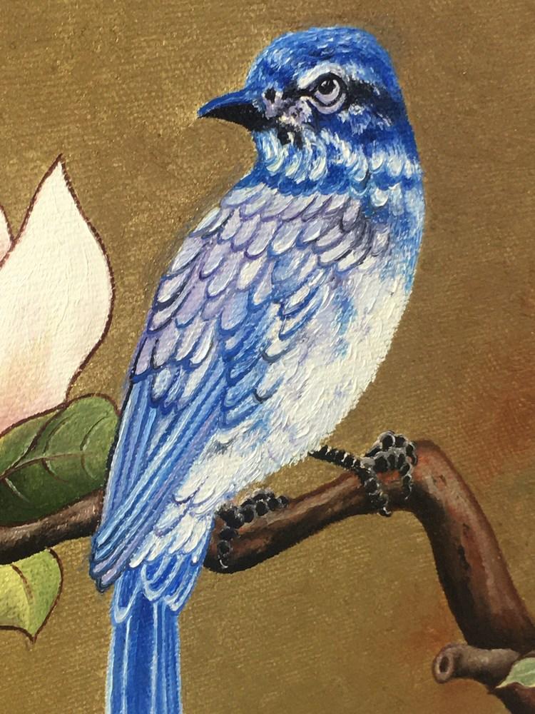 Bluebird Landed closeup