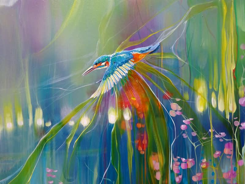 Kingfisher Romance d2 S
