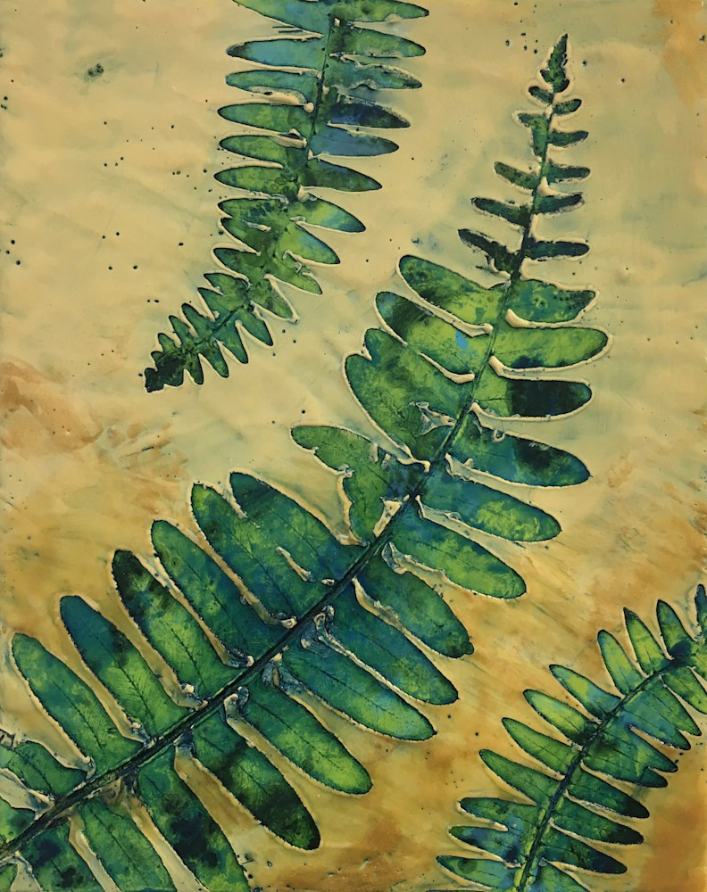 BridgetBenton ferns8x10 encausticnatureprint $325 front