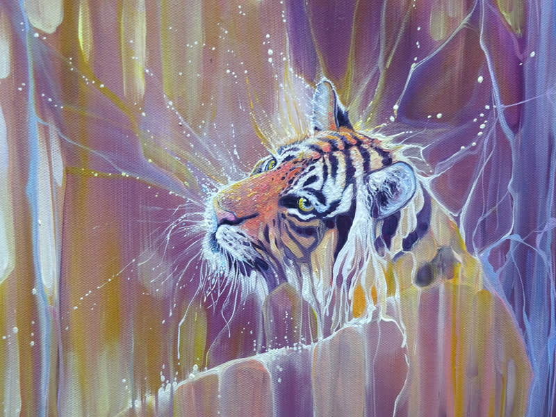tiger soul d3 S
