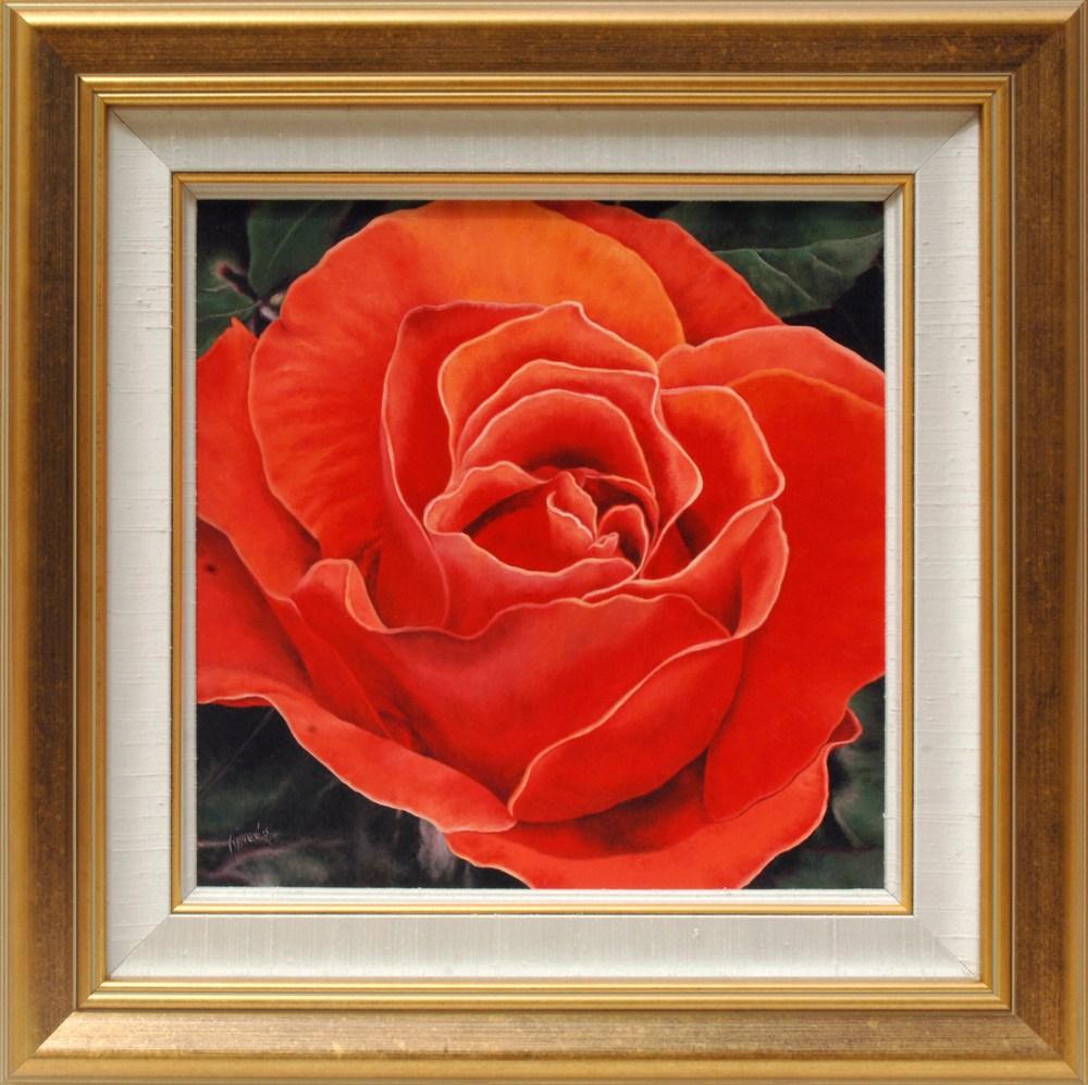 Coarl Rose inframe mc 0717 22