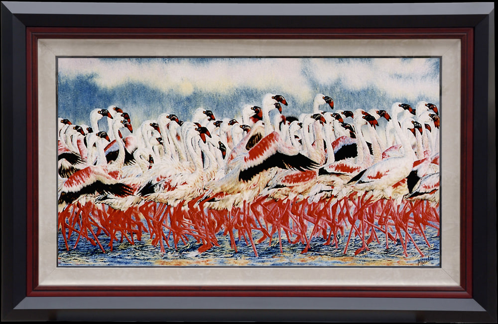 Flamingos   framed