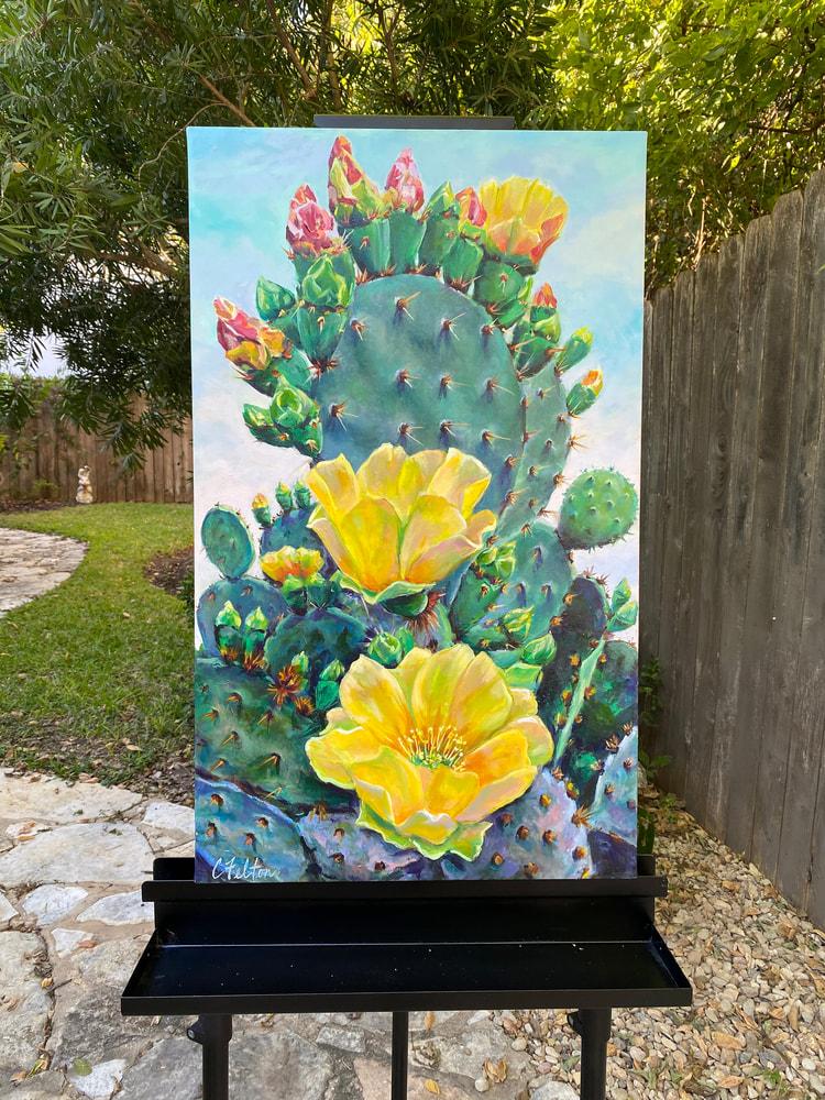 Cactus Queen  frontal outdoors