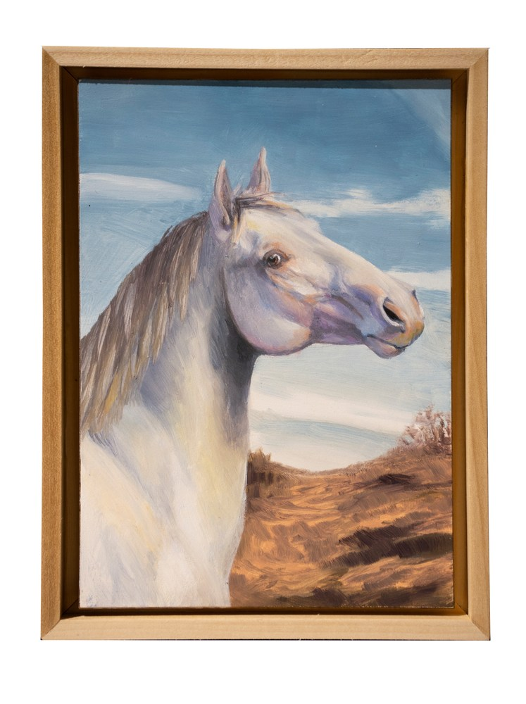 5x7 surprise eyes horse middle