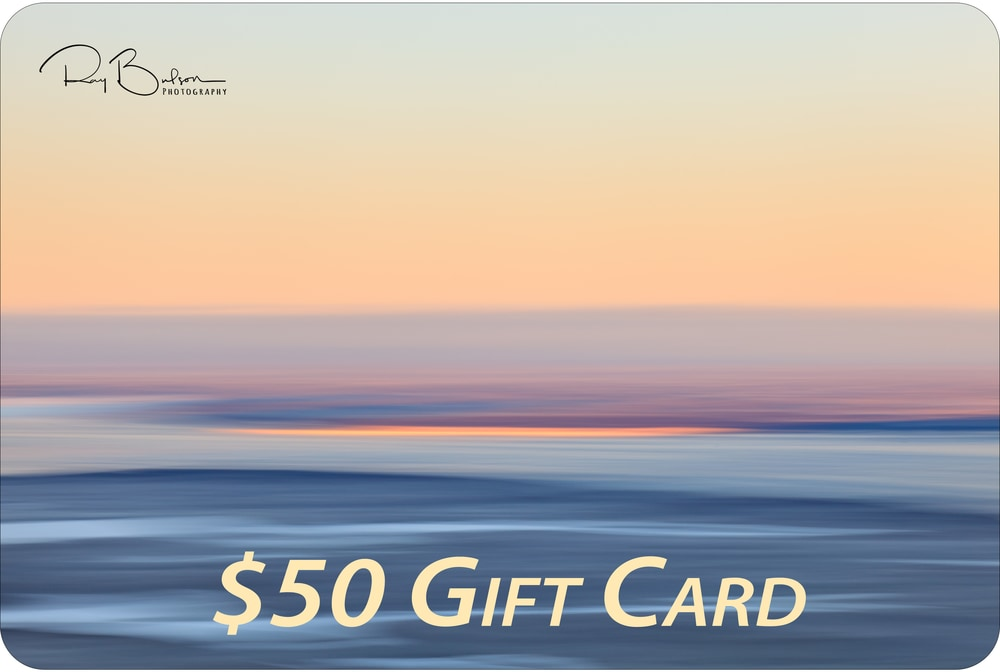 20111129 Knik Arm MG 4067 artstorefronts gift card