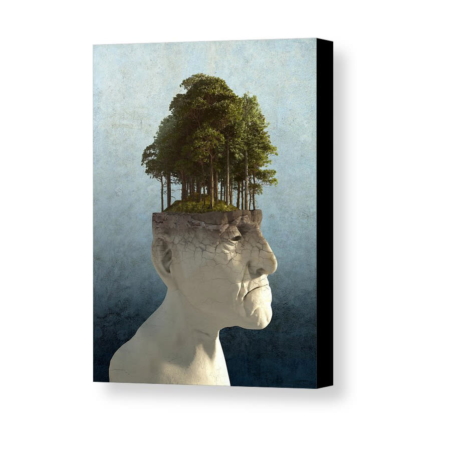 personal growth cynthia decker canvas print