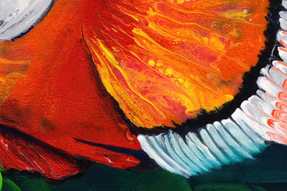Clown and Anemone DETAIL3