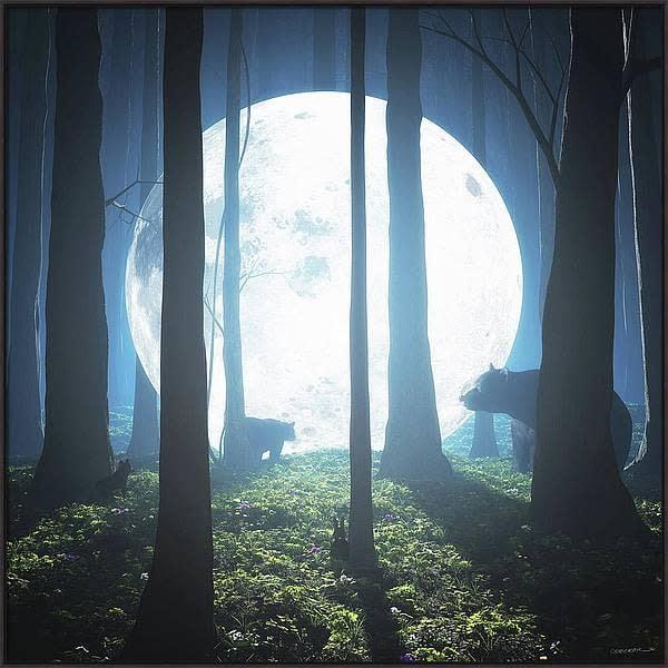 moonlandingframed