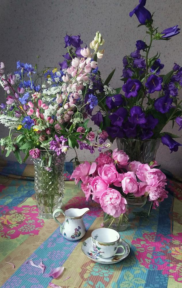 Still Life with tea cup InnaDzhanibekova res