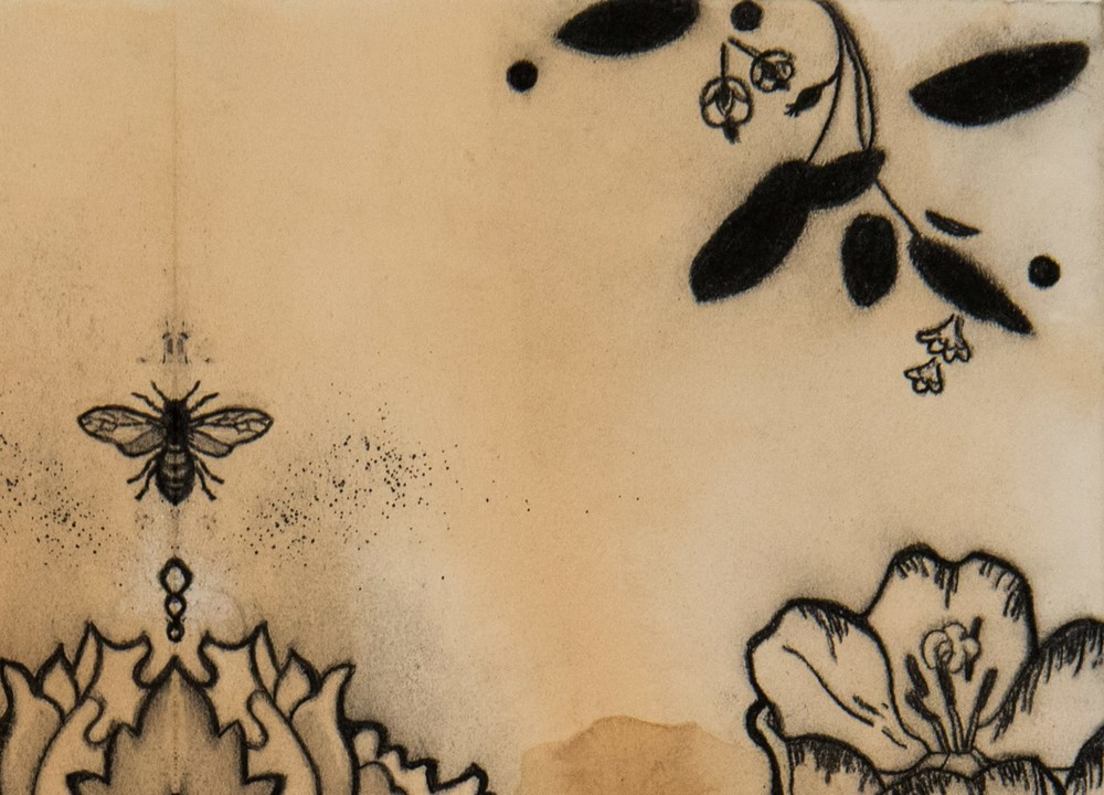 View to a Garden of All Flowers 30x22  charcoal on tea stained paper 2020 JAAP Detail 1