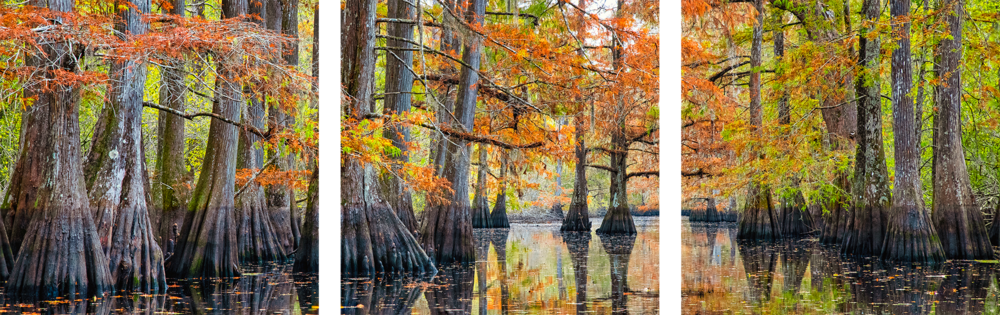 Andy Crawford Photography Tranquility triptych preview