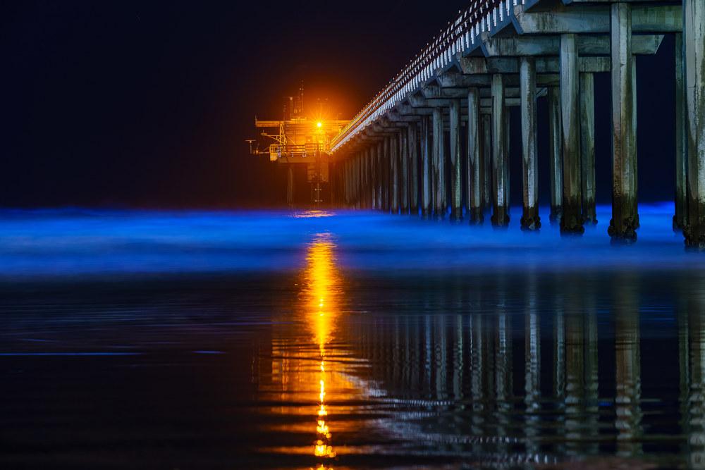 Scripps Pier Bio Luminescence 1 5 16 2020