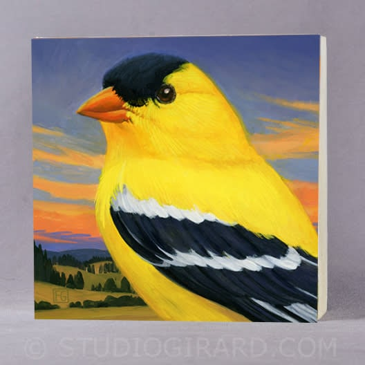 goldfinch cropped for bird block 2