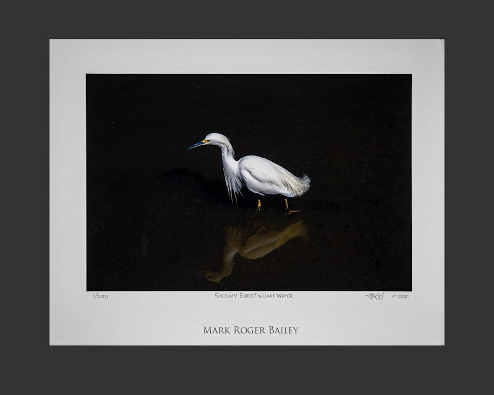 6x9 Snowy Egret I