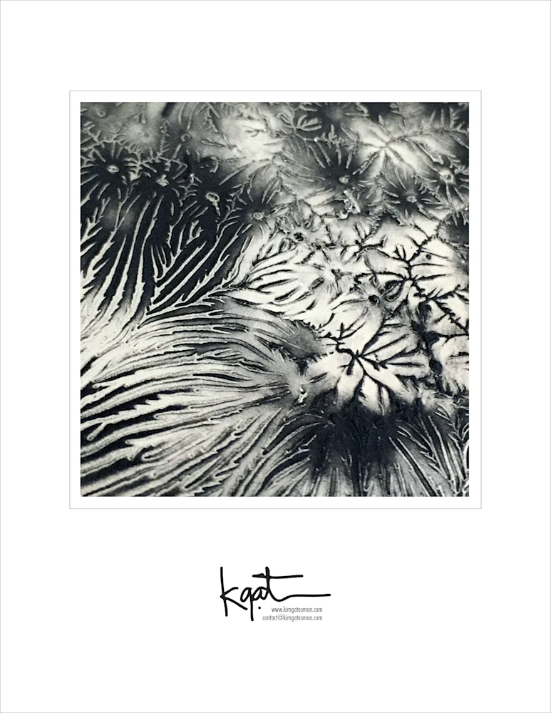gatesman photobk LTR 04 for prints 2