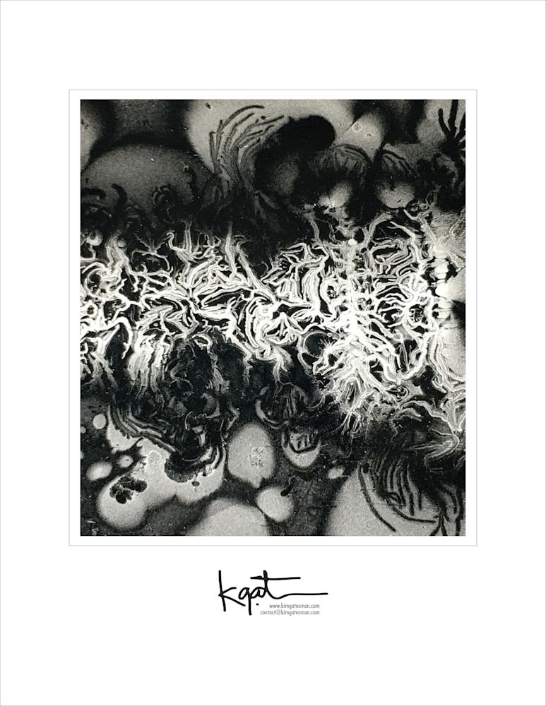 gatesman photobk LTR 04 for prints 18