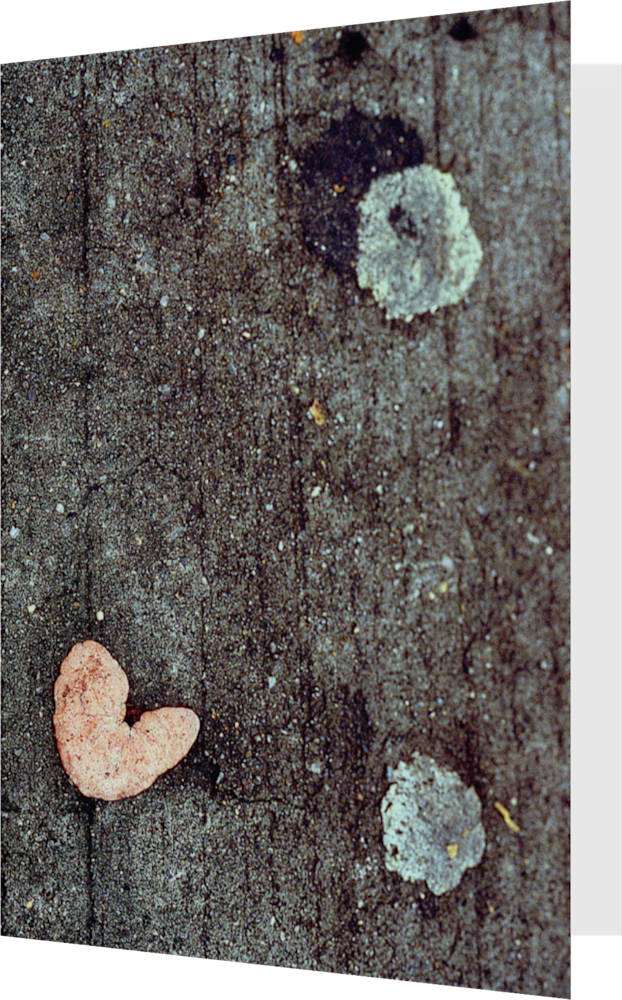 CLOSER NY GUM HEART ACNY016 abstract photography Sherry Mills PRINT GREETING CARD 1