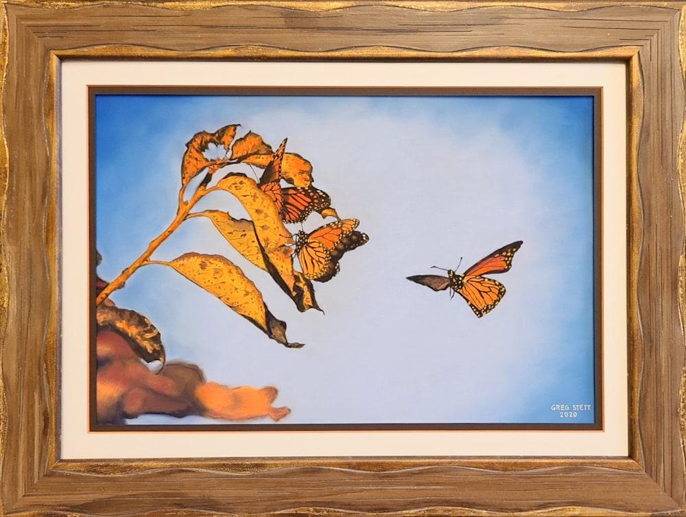 Roosting Monarchs2 1