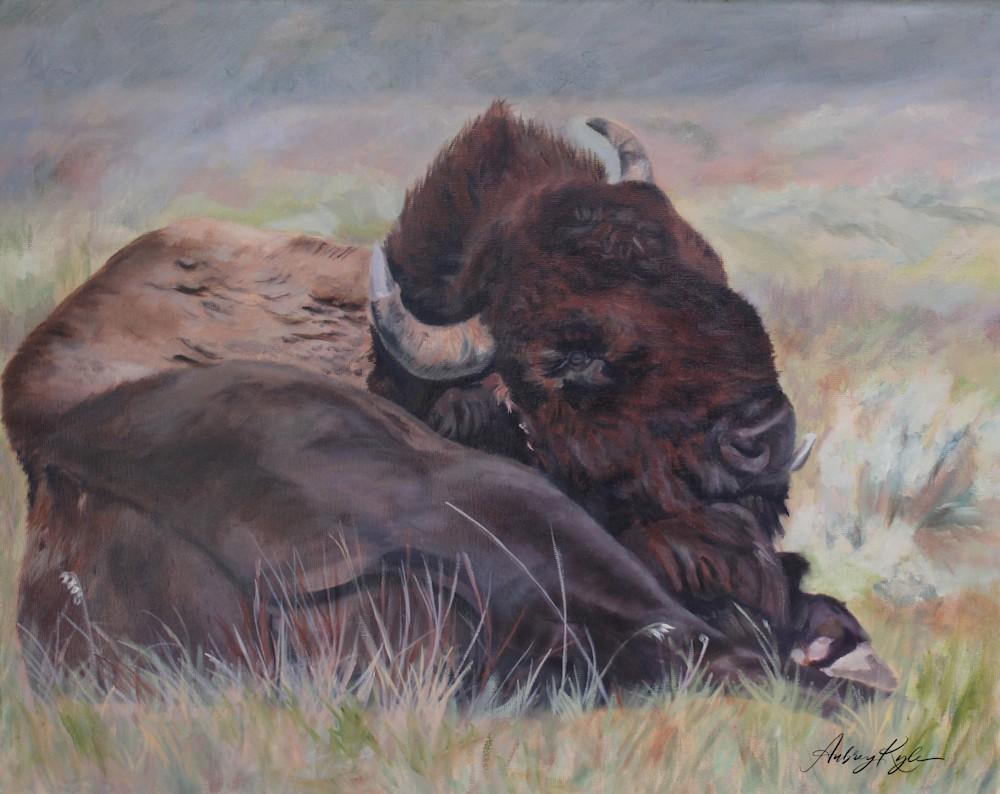 Lazy Buffalo Day