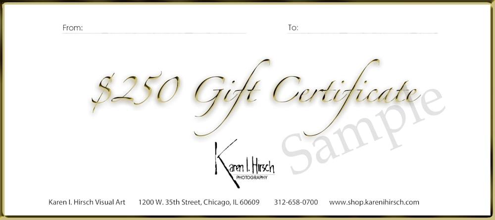 Gift certificate $250 2020 sample