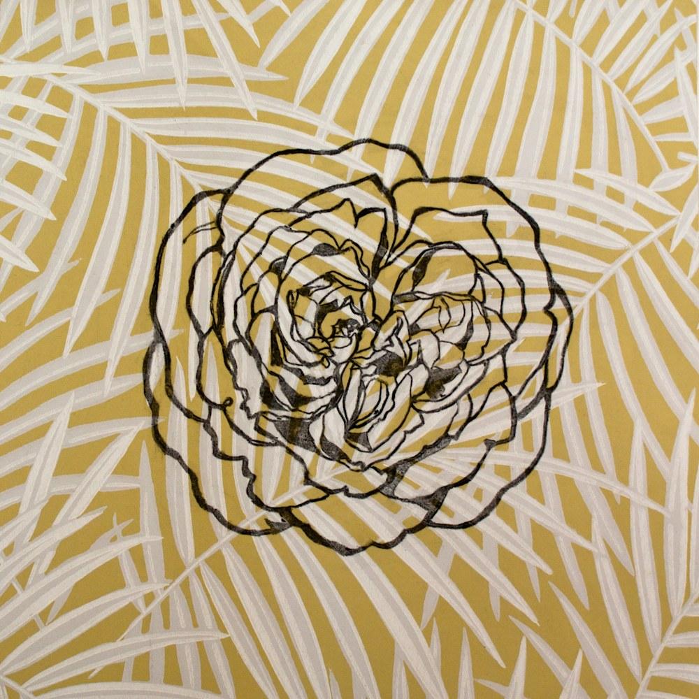 42 English Rose (Perdita)15x15 charcoal on wallpaper sample 2013 JAAP