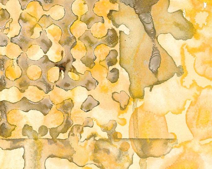 acorngriddetail
