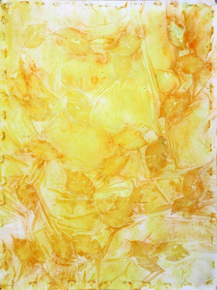yellowo