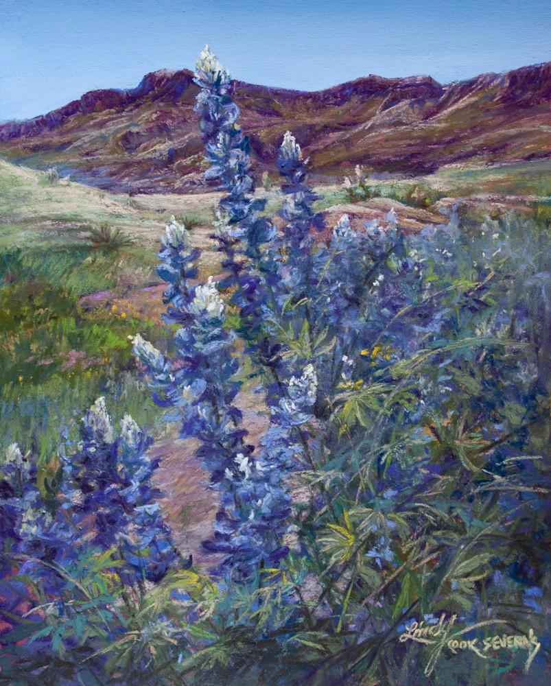 7d15 Tall Texas Blues 10x8 pastel Lindy C Severns 2021 edit